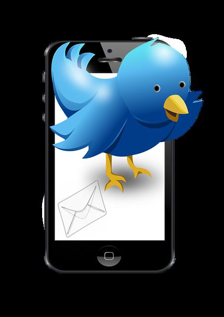 【TWTR】の株価は下落傾向 でもブログとTwitterの連携を未経験者の私がやってみた