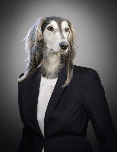 ダウの犬、高配当株、米国株、アメリカ株