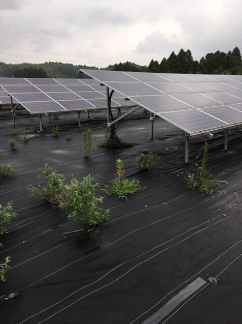 太陽光投資の視察3
