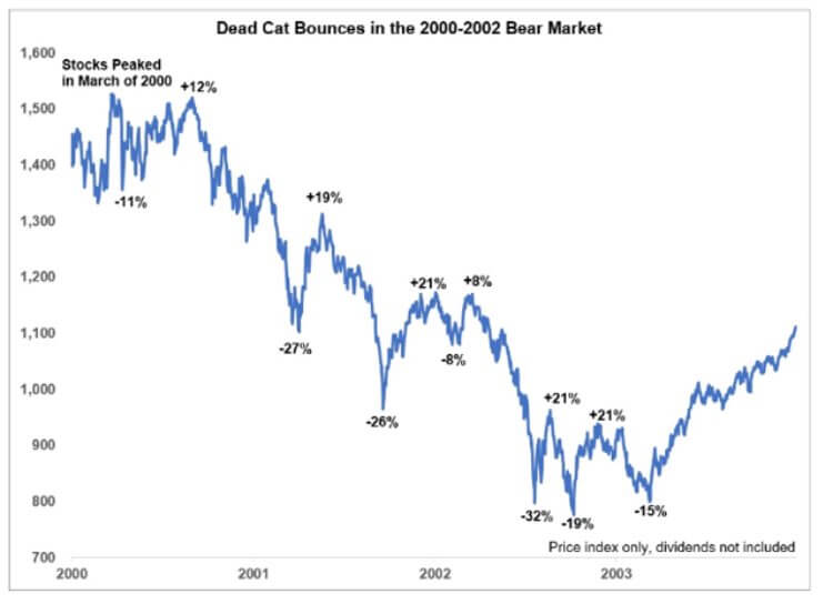 Dead cat bounce on IT bubble